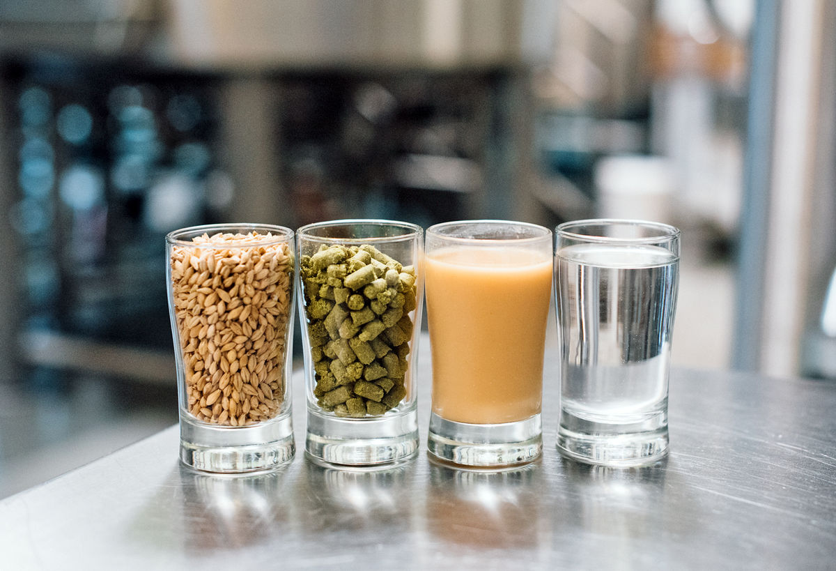 hop pellets, water, grain and beer in small glasses