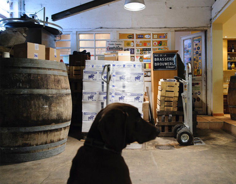 FOOD & TRAVEL - A Day In The Life At Cantillon
