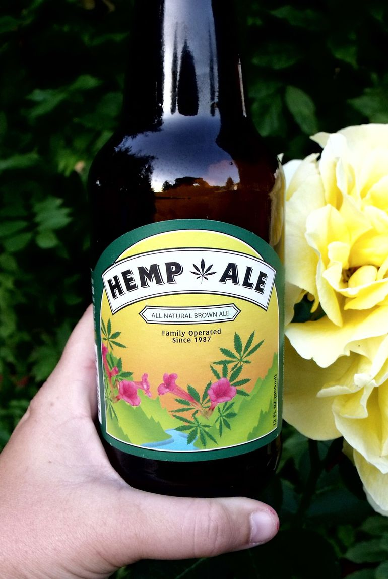 The Buzzing Science Behind Cannabis Beer