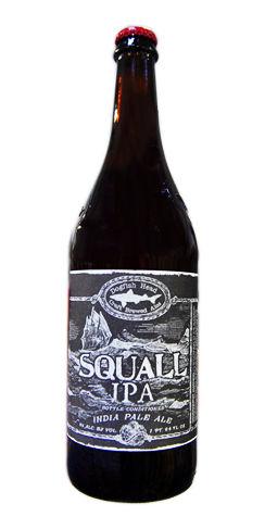 squall ipa dogfish head beer