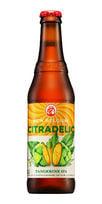 Citradelic IPA New Belgium beer
