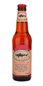 90 Minute IPA Dogfish Head Beer