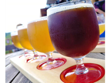 10 Beer Drinking Questions Answered