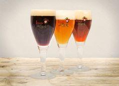 Brugse Zot Beer Connoisseur