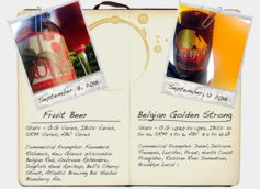 Fruit Beer & Belgian Golden Strong Ale Style