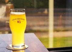 Celis Brewery North Texas Pint Nights