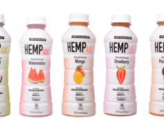 HempAde Relaunches Line of Hemp-Infused Fruit Drinks