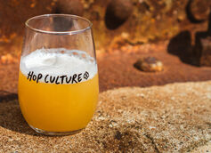 Next Glass, Owner of Untappd and BeerAdvocate, Acquires Hop Culture