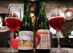The Difference Between Sour and Wild Ale