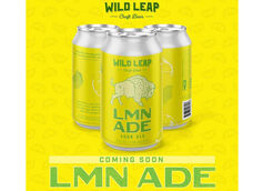 Wild Leap Brew Co. Unveils New Year-Round Beer LMN ADE