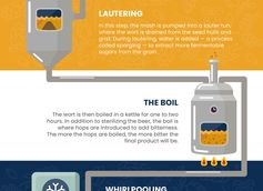 From Grain to Glass: Understanding the Beer Brewing Process