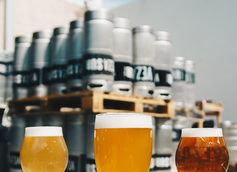 Is Getting a Degree in Brewing Science a Good Investment?