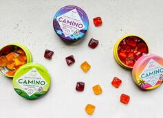 5 Reasons Why CBD Gummies Are Becoming So Popular