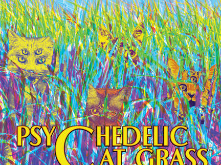 Psychedelic Cat Grass from Short's Brewing Returns